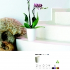 saksii-nikoli-katalog-web_2013-059-059