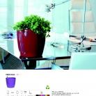 saksii-nikoli-katalog-web_2013-060-060