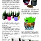 saksii-nikoli-katalog-web_2013-061-061