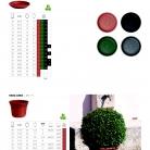 saksii-nikoli-katalog-web_2013-064-064