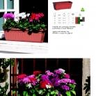 saksii-nikoli-katalog-web_2013-066-066