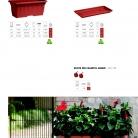 saksii-nikoli-katalog-web_2013-073-073