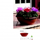 saksii-nikoli-katalog-web_2013-075-075