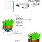 saksii-nikoli-katalog-web_2013-078-078