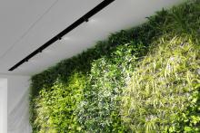 Зелена стена, обект Гора-13