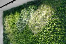 Зелена стена, обект Гора-14