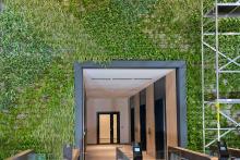 Зелена стена, обект Гора-3