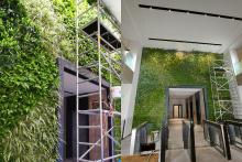Зелена стена, обект Гора-7