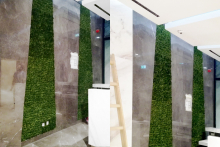 Вертикално озеленяване-34
