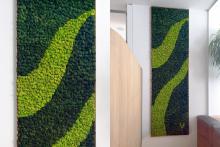 Зелени стени-36