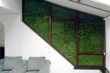 Вертикално озеленяване-39
