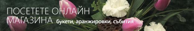 banner-tsvetia-sofia