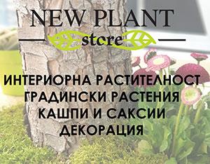 Магазин за кашпи, саксии и цветя