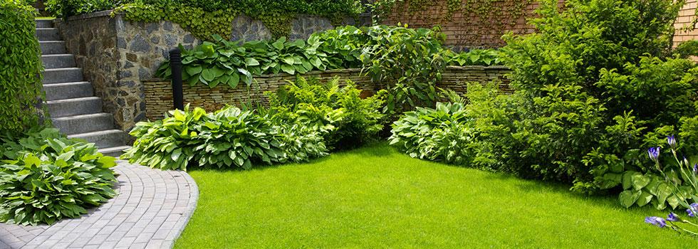 Грижа за градината