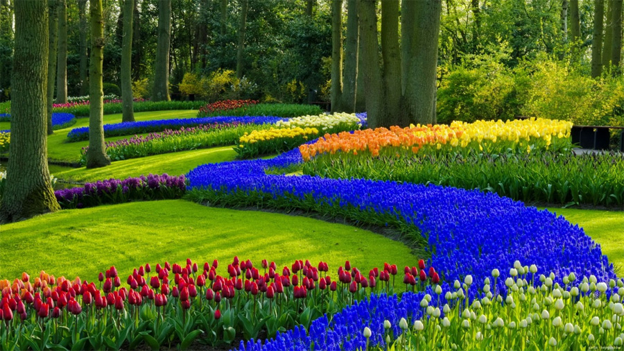 Spring-Garden-Desktop-Wallpaper-1